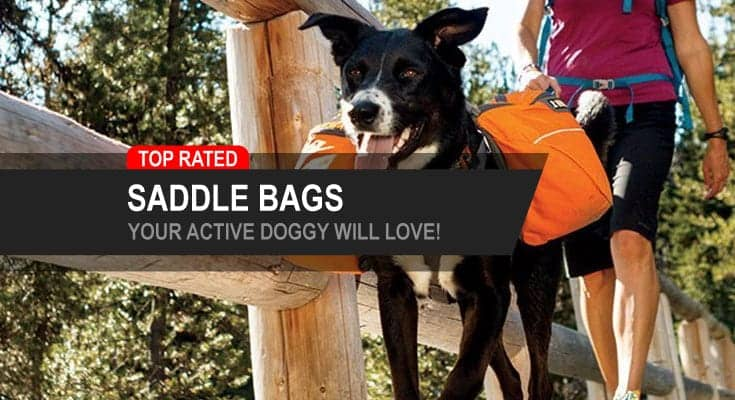 top rated saddle bags your active hiking camping dog will love