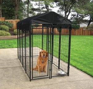Extra Large Outdoor Dog Pens heavy duty with roof