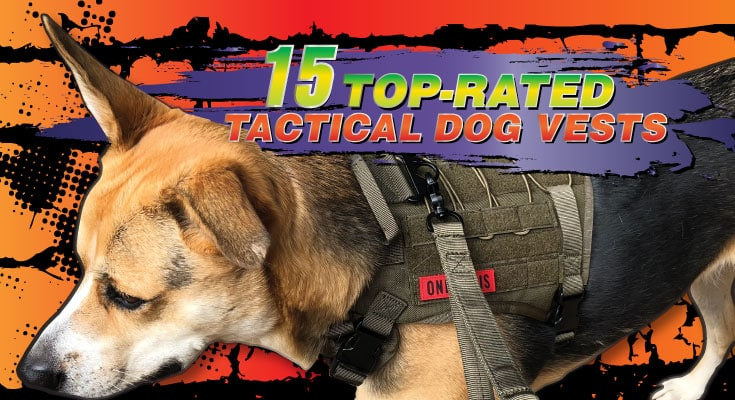15 best tactical dog vests top rated dog