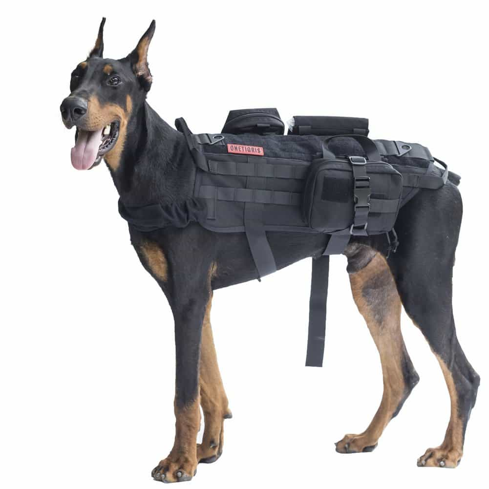 d86f54c14feab 15) Top-Rated Best Tactical Dog Vest Your Active Dog Will Love!