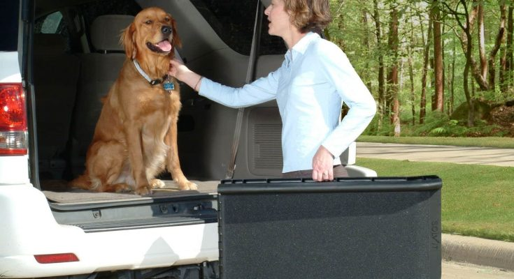 best dog ramp for dogs getting into cars solvit bi fold ramp