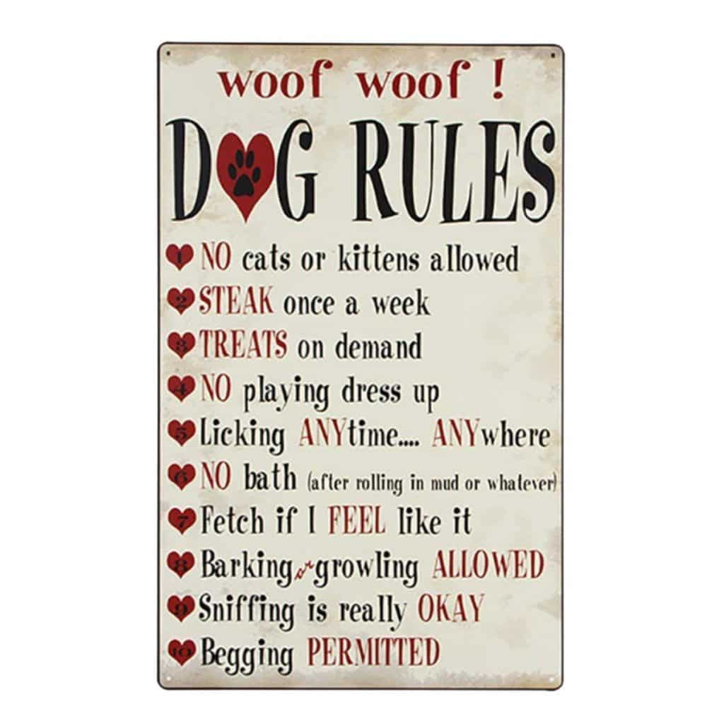 dog rules and regulations signs taking your puppy camping