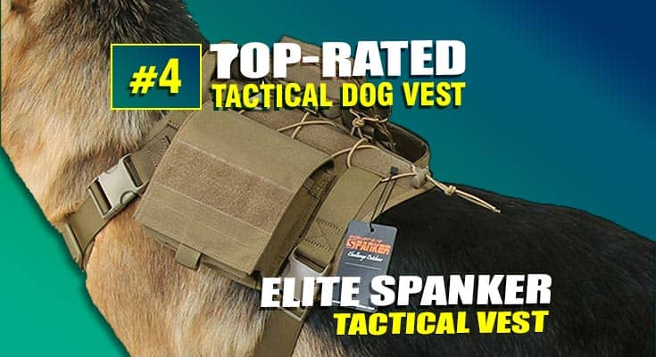 elite spanker best tactical dog vest #4