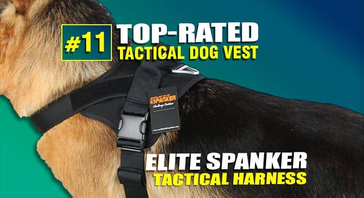 elite spanker tactical dog harness vest best #11