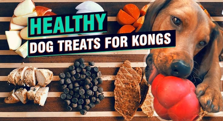 Healthy Dog Treats for Kong's apples, chicken, carrots
