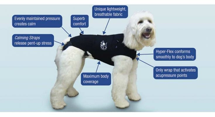The Original Anxiety Wrap | Thunder Shirts for Dogs
