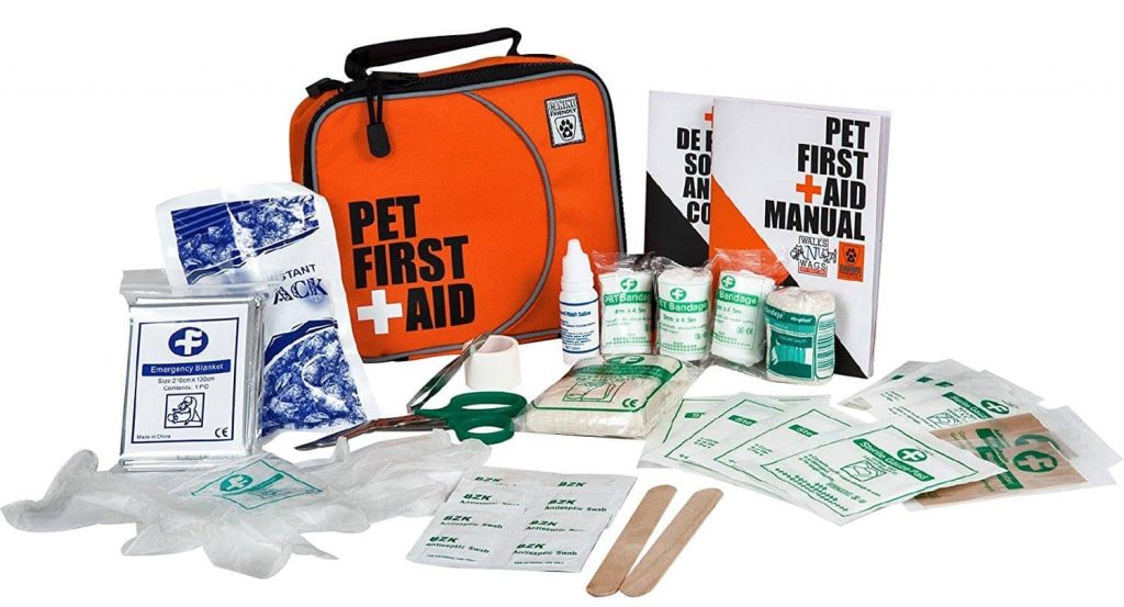 tips for taking dogs camping bring medical supplies