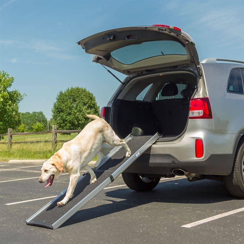 top rated dog ramps for dogs to get into trucks