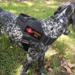 yisibo tactical service dog vest