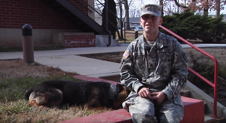 military working dog certification tactical dog